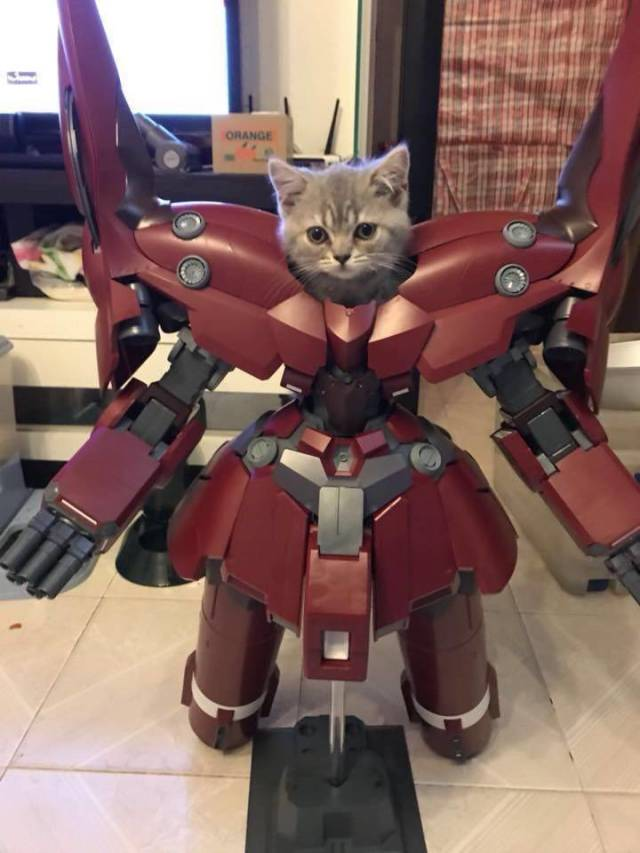 I Am Iron Cat Cutetropolis